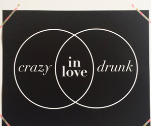 crazy, drunk, and love image
