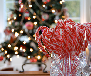 christmas, candy, and light image