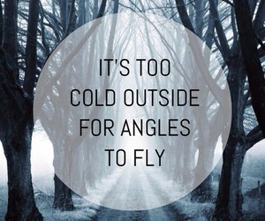 cold, angel, and fly image