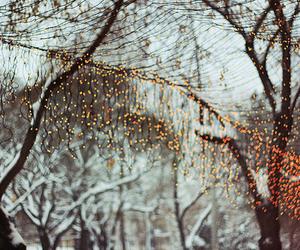 winter, lights, and christmas image