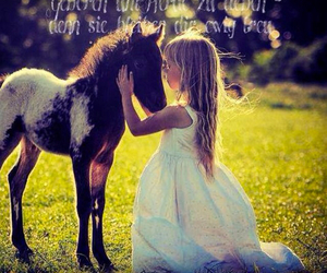 beautiful, horse, and little girl image