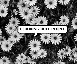 hate, flowers, and people image