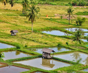 beautiful, country, and indonesia image