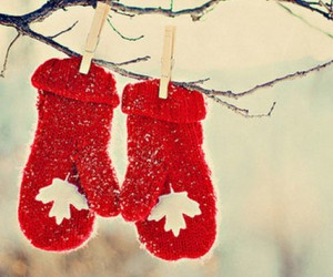 christmas, fashion, and new year image