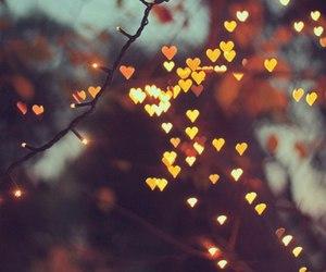 light, hearts, and christmas image