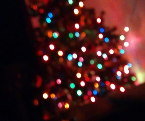 christmas, natal, and tree image