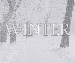 december, hiver, and montage image