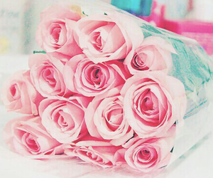 life, pink, and rose image