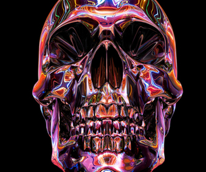 skull and colors image