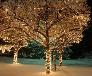 christmas, cozy, and fairy lights image