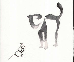cat, mouse, and typography image