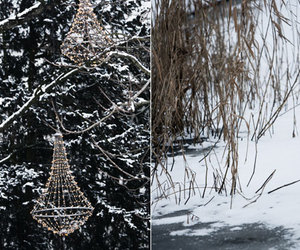 branches, lights, and snow image
