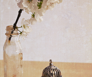 flowers, vintage, and cage image