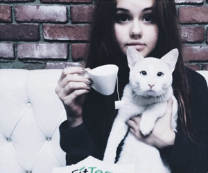 debby ryan, cat, and icon image