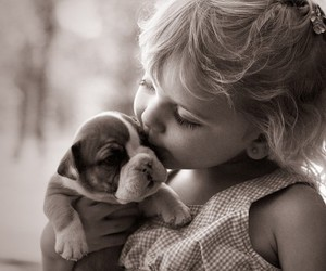 beauty, puppy, and love image