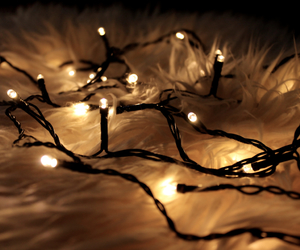 christmas, december, and fairy lights image