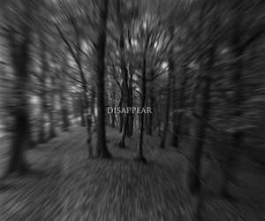 disappear, forest, and sad image