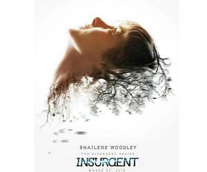 insurgent and divergent image