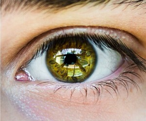 beautiful, eyes, and yellow image