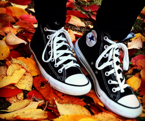 artsy, autumn, and converse image