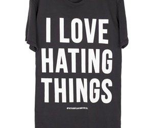 i love and i love hating thing image