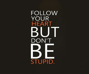 heart, stupid, and follow image