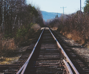 train, nature, and vintage image