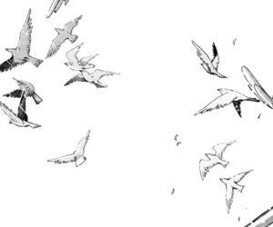 anime, manga, and birds image