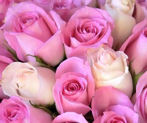 lovely, cute, and pink image