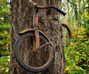 bicycle, wooden, and bike image
