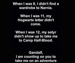 narnia, hogwarts, and fandom image