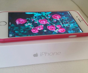 apple, fashion, and flowers image