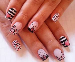lovely, nails, and animalprint image