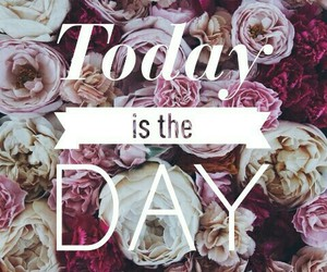 flowers, pink, and today is the day image