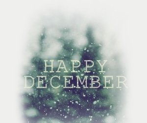 december, happy, and snow image