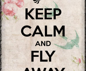 color, fly, and keep calm image