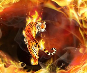 3d, fire, and animal image