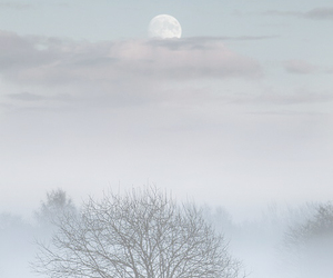 clouds, winter, and fog image
