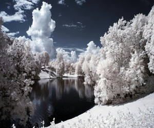 beautiful, white, and snow image