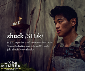 Minho, the maze runner, and shuck image