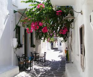 flowers, beautiful, and Greece image