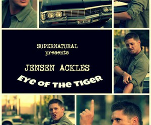 supernatural, dean winchester, and deanwinchester image