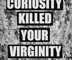virginity, curiosity, and quote image