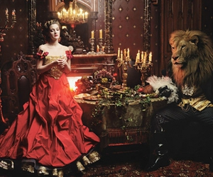 lion and red image