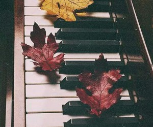 music, piano, and autumn image