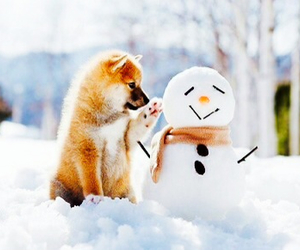 snowman, cute, and dog image