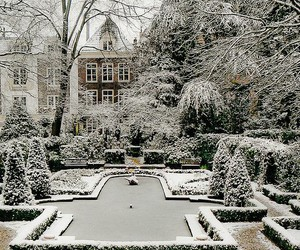 winter, snow, and garden image