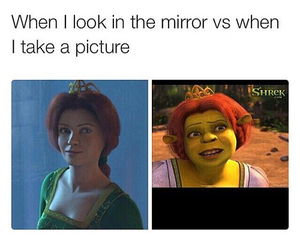funny, lol, and mirror image