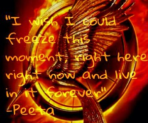 quote, catchingfire, and katniss image