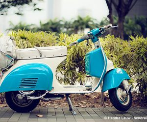 blue, scooter, and vintage image